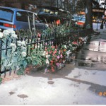 custom_parkway_fence_2_fs