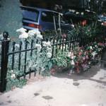 custom_parkway_fence_fs